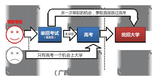 广西单招流程图